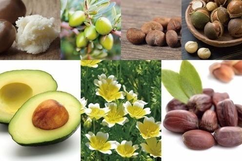 7種の植物オイル